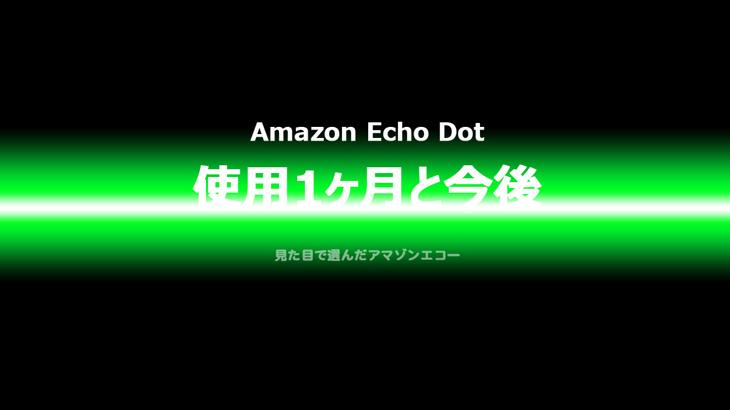 Amazon Echoって 使用1ヶ月の感想と今後
