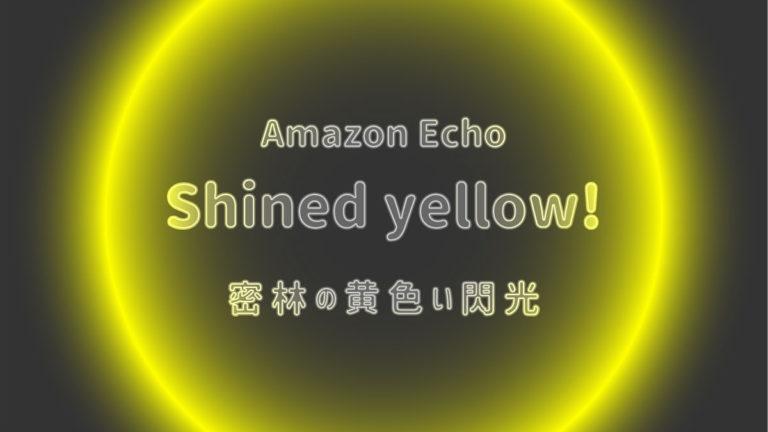 アレクサ 黄色の光 echo